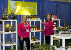 Arianne Spitter and Marion Francke of Westbrook Floral, a Canadian floral wholesale distributer of flowers, plants, dish gardens and floral supply products.