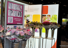 At the PMA a lot of attention for breast cancer, with October being Pink Ribbon Month. GEMS Group focusses on creating demand for flowers on various occasions and beating cancer is one of them.