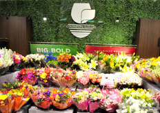 """Continental Flowers is a grower, importer and distributor of fresh cut flowers since 1974. They produce ""Alstroejewels®"" alstroemerias and ""Dos Niñas®""."""